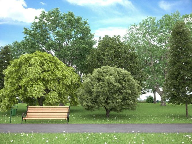Realistic Tree Collection3D model