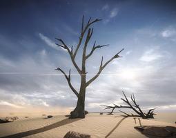 FREE 3 Dead Trees Sample Models 3D asset