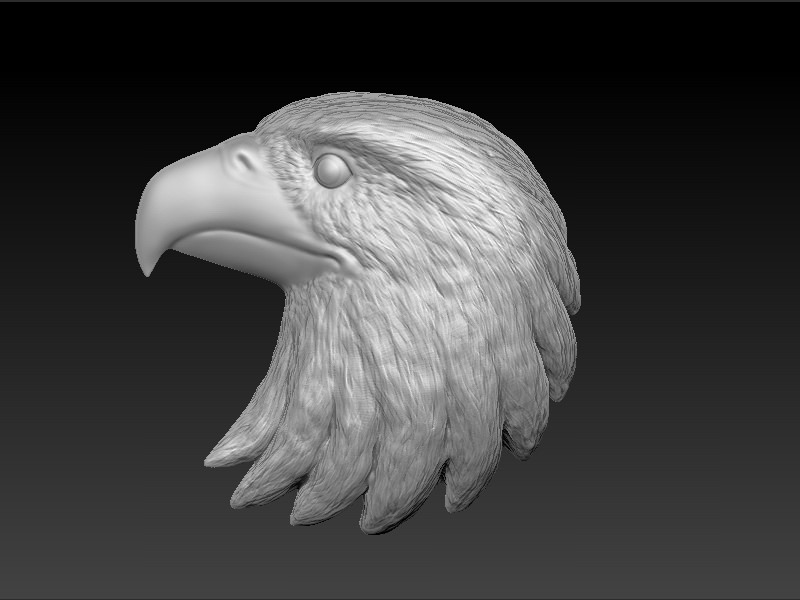 Eagle Head 3D Model 3D printable .stl - CGTrader.com