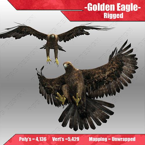 golden eagle 3d model max obj mtl 3ds fbx tga 1