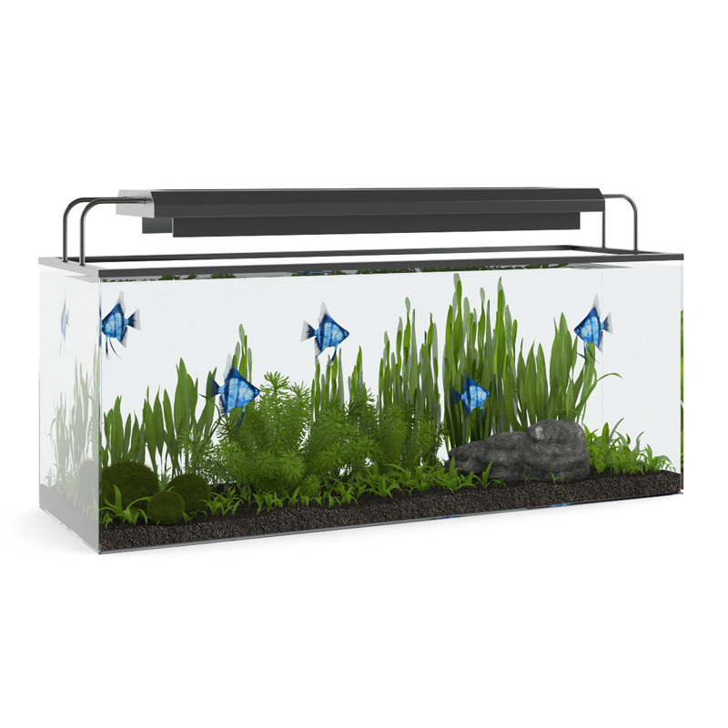 rectangular aquarium with light 3d model max obj fbx c4d