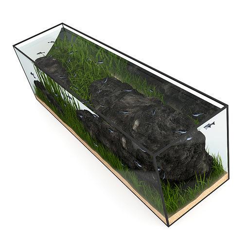 large rectangular aquarium 3d model max obj mtl fbx c4d 1