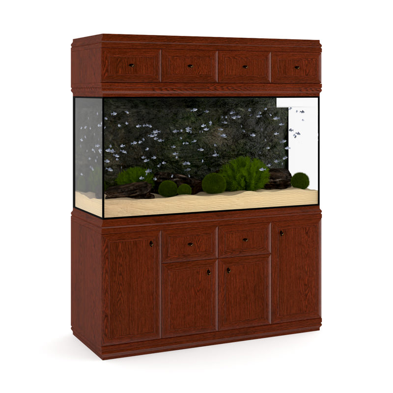 Aquarium Cabinet 3d Model Max Obj Fbx C4d