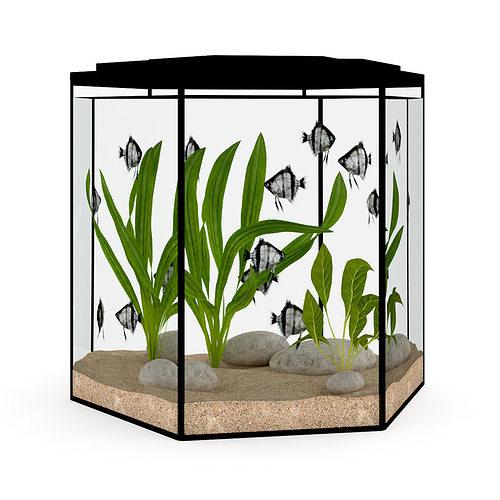hexagonal aquarium 3d model max obj fbx c4d 1