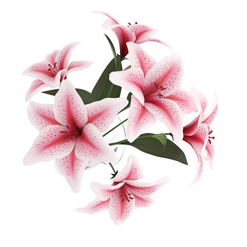Pink Lilies in Vase3D model
