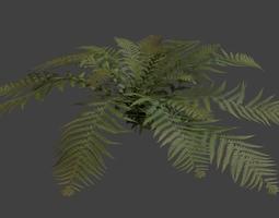 fern model 3d model blend