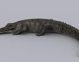 animated realtime crocodile game ready animated model