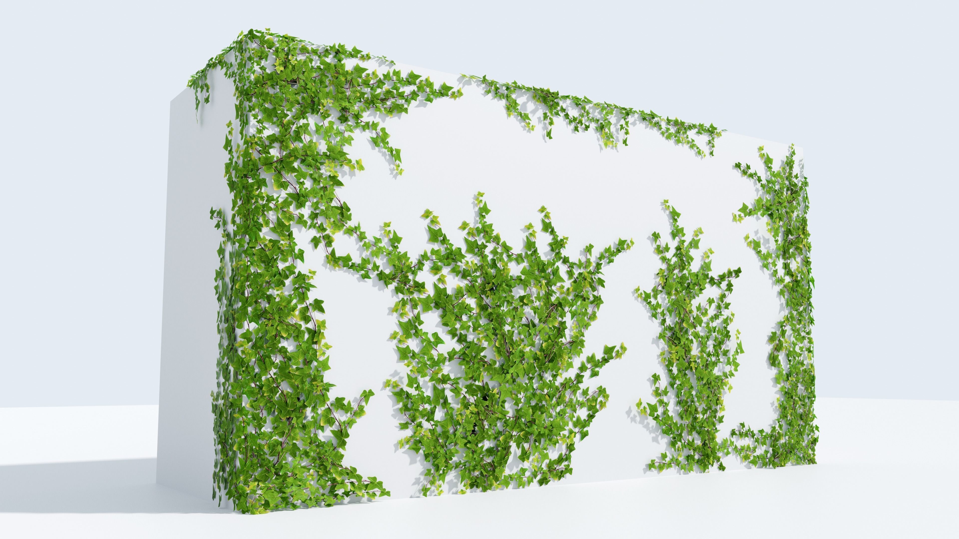 LowPoly Ivy