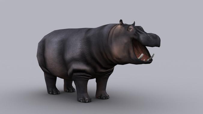 HIPPOPOTAMUS GAME READY ANIMATED MODEL3D model