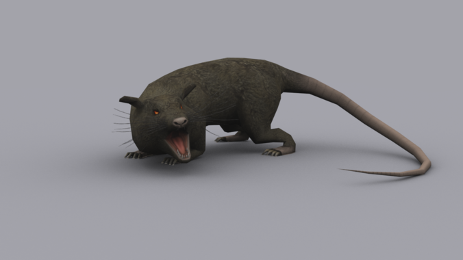 GIANT RAT GAME READY ANIMATED MODEL3D model