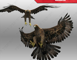 3d asset low-poly golden eagle animated