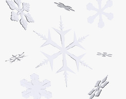 Snowflakes 3D Model