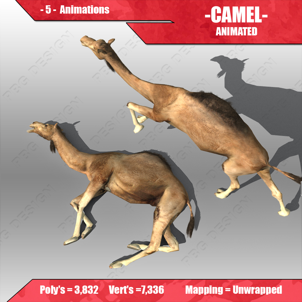 camel model In a present study an attempt is made to evaluate the financial performance of the  syndicate bank using camel model camel model is basically an approach.