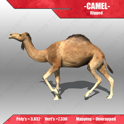 camel model World journal of social sciences vol 3 no 4 july 2013 issue pp 36 – 55 a camel model analysis of state bank group sushendra kumar misra and parvesh kumar aspal.