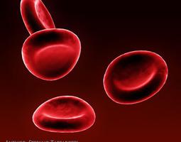 3D model medical Red blood cells