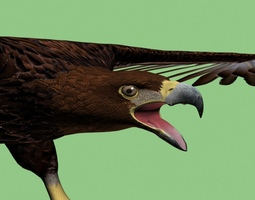 3D model GoldenEagle