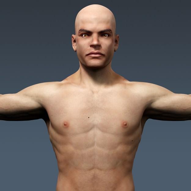 Human Male and Female Anatomy - - 23.8KB