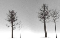 VR / AR ready 3d asset dead trees