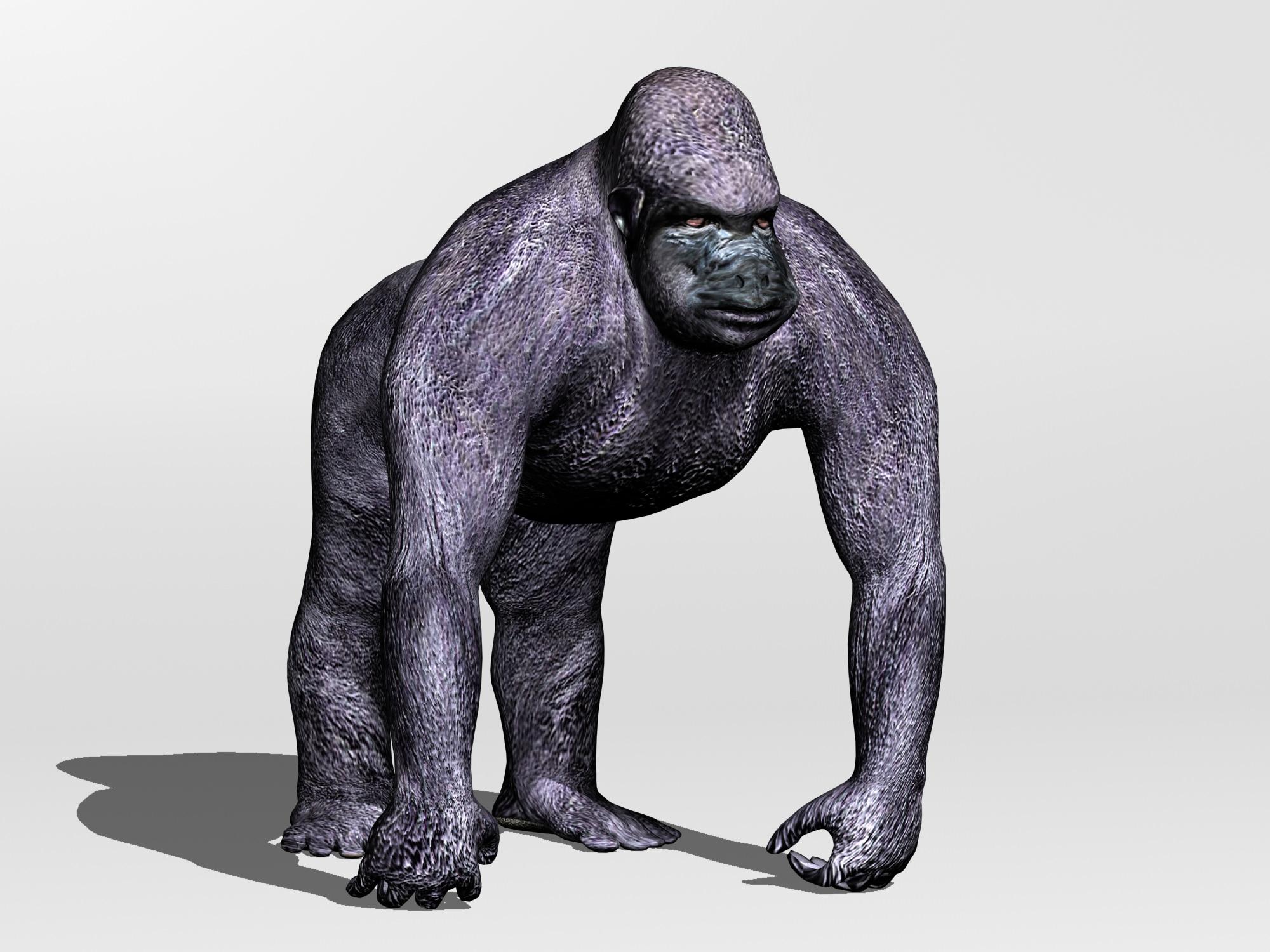 Gorilla 3d Model Max Obj 3ds Fbx C4d Blend