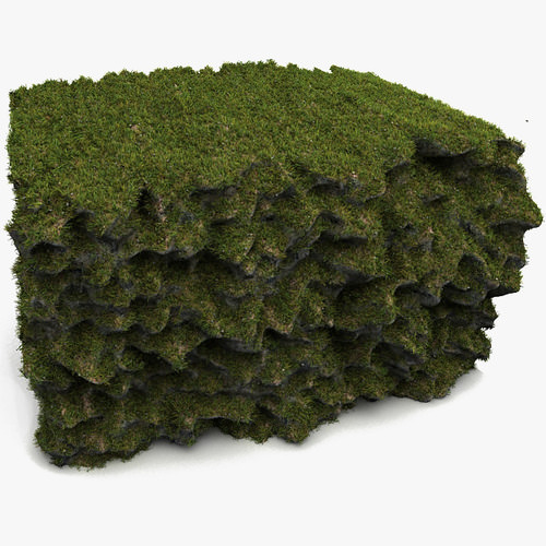 Grass soil cliff reef architectural exterior other 3d for Soil 3d model