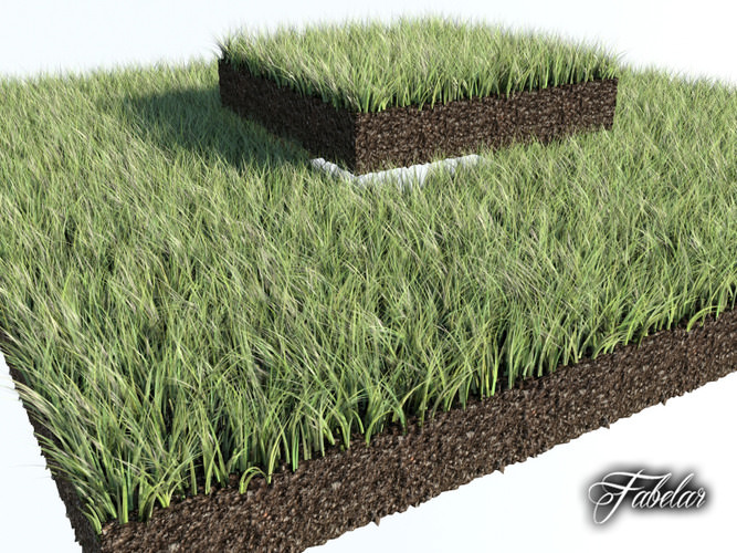 Model grass 3ds max 90