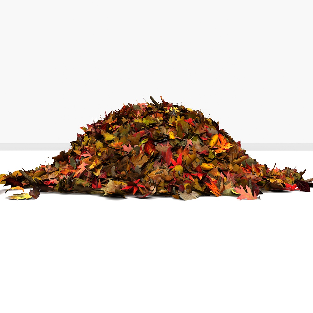 pile of colourful leaves Plant / Tree - Other 3D Models ...
