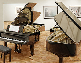 Grand Piano full detailed with Rig 3D