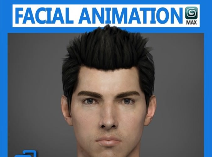 Adult Male Head Rigged3D model