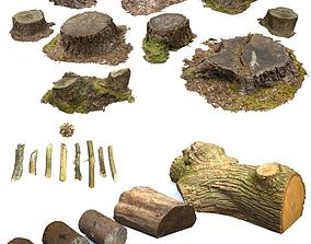 3D model Woodland Photoscan Objects