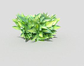 3D asset realtime tree Plant