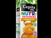 Cepita Nutridefensas Naranja Tetrapak Slim 1000ml 3D Model
