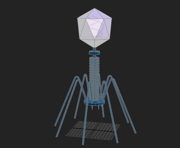 Bacteriophage Virus 3D Model .max - CGTrader.com