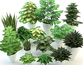 3D model Forest flowers and plants set