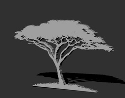 african acacia tree 3d printable model