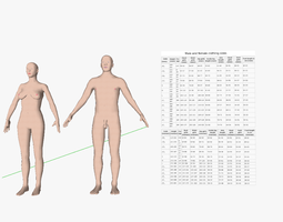 Male and female Homo sapiens 3D Model