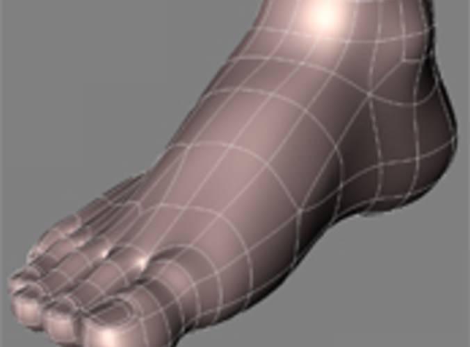 Human Feet Free 3d Model Obj