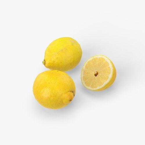 lemons 3d model max obj fbx stl blend mtl 1