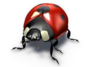 Ladybug 3D Model coccinella