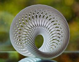 Mobius Nautilus 3D Model