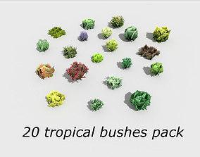 20 tropical bushes Pack 3D asset