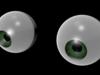 Human Eyes 3D Model
