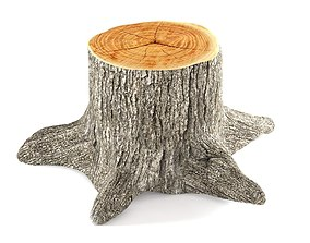 3D model plant Tree stump