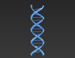 DNA helix 3D