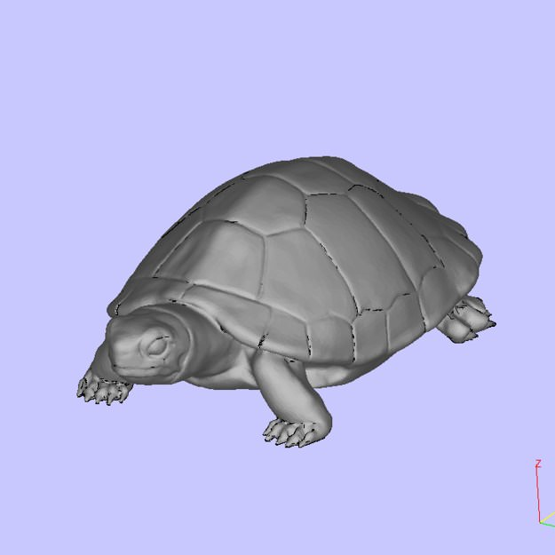 Turtle 3D Model 3D Printable .stl