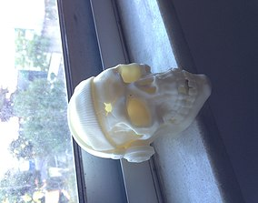 3D print model Skull with headphones and