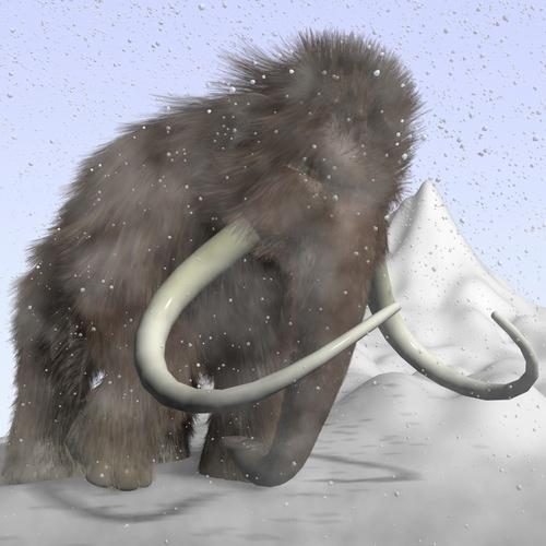 Cartoon Mammoth Rigged3D model