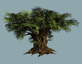 Oak Tree 3D model VR / AR ready