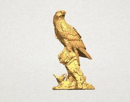 Eagle -TOP MODEL