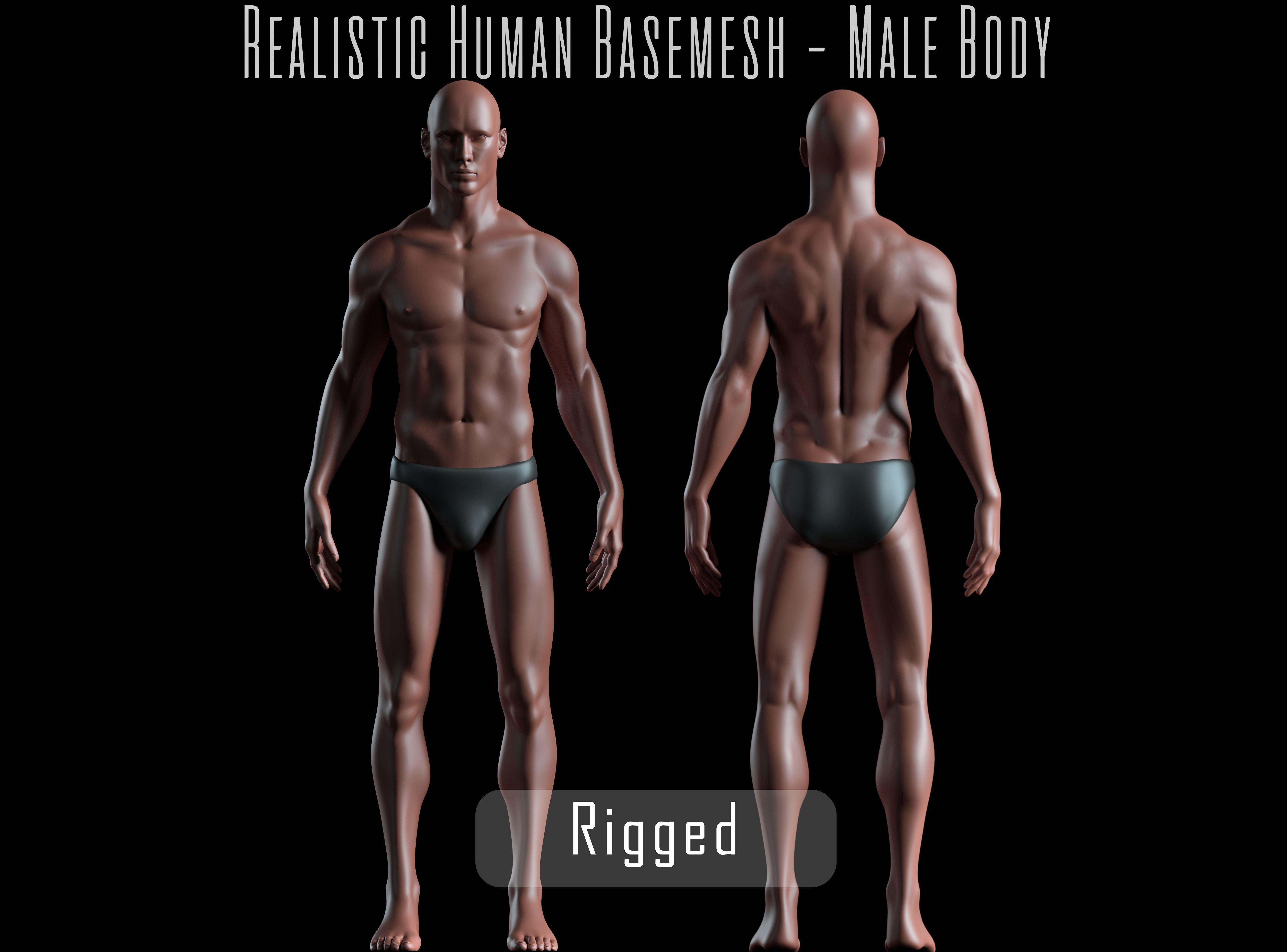 Realistic Human Basemesh - Rigged - UVMapped - Man Body