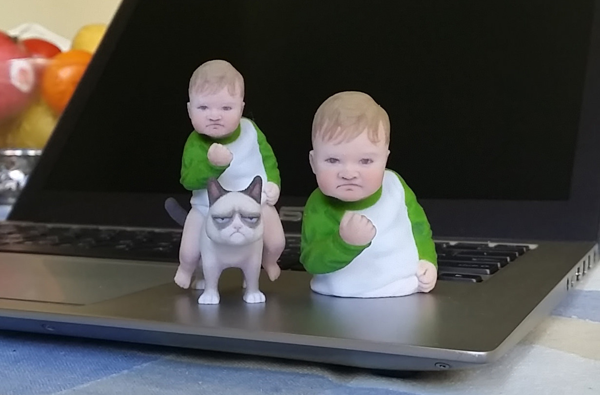 Success Kid Meme 3d Print 3d Model 3d Printable Stl Wrl